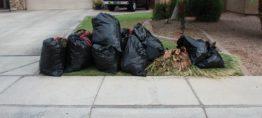 Bulk Trash Removal